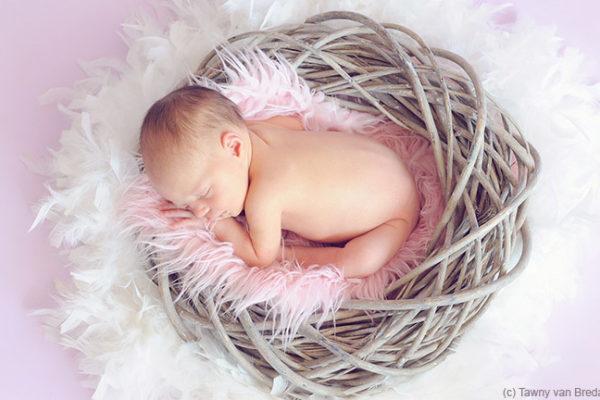 Die zentralen Aspekte beim Babyzimmer