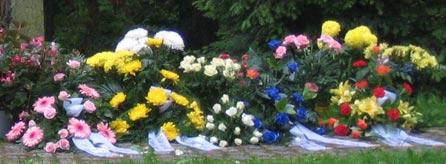 Eine Hinterbliebenenrente erhalten Witwen oder Witwer nach dem Tod des Ehegatten, wenn dieser rentenversichert war.