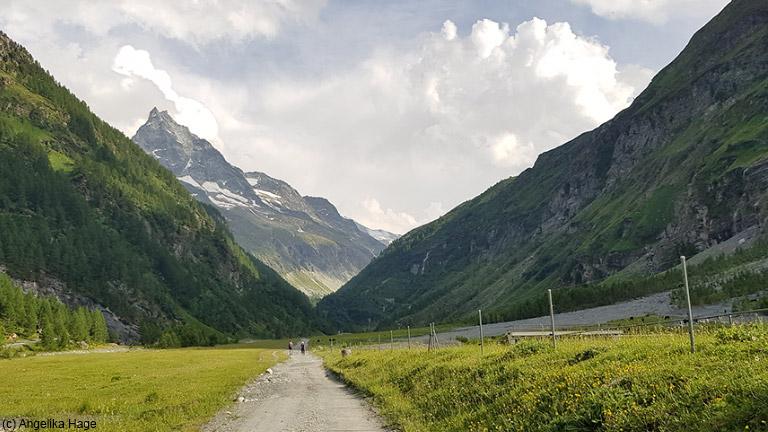 Alpine Bergwelt – Mit Kindern entdecken