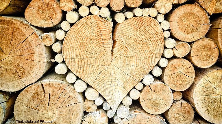 Holz atmet im wahrsten Sinne des Wortes!